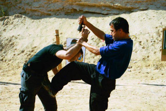 これがカパプだ!イスラエル自己防衛システム