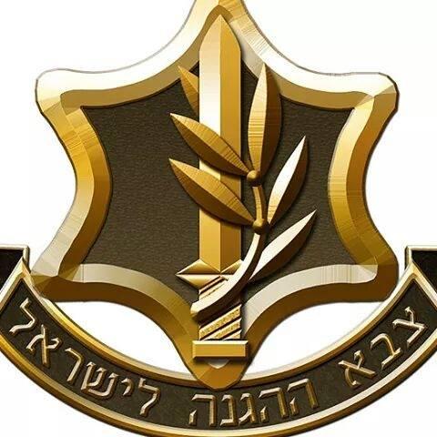 対外諜報機関『モサド』とカパプ